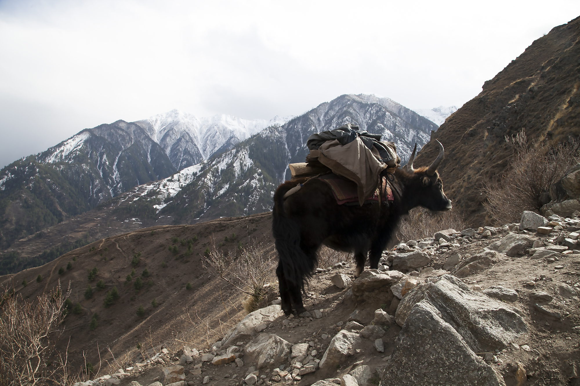 Nepal_RB_FoodCrisis07